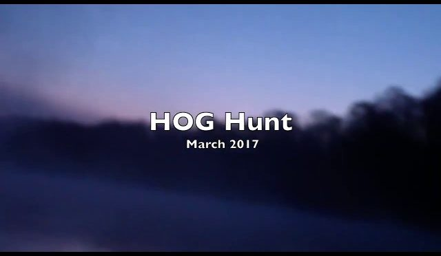 2017 Hog Hunt Savannah, Georgia