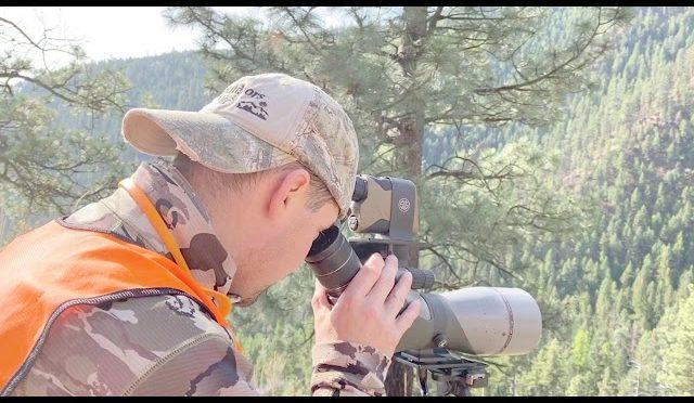 2019 Montana Bear Hunt