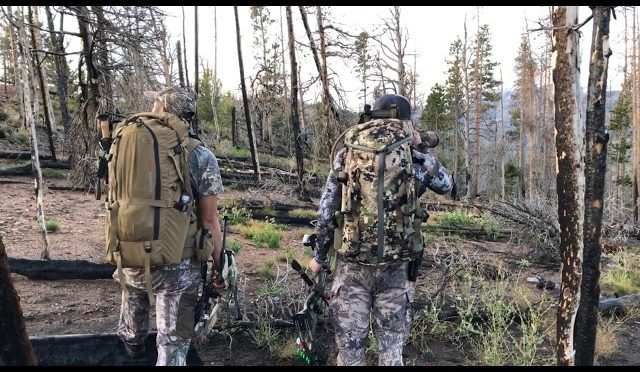 3 more steps 2019 archery elk hunt