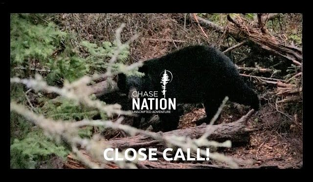 Bear Hunting at Eye Level!   S3E15