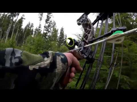 Elk Hunting in Washington part 2