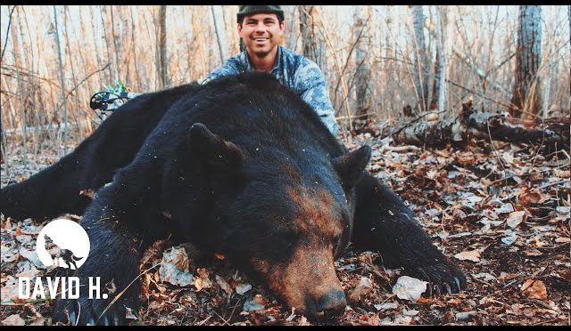 PERFECT shot on BIG bear!!!