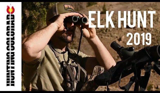 TRACKING A MASSIVE BULL / 2019 COLORADO ELK HUNT PART 2