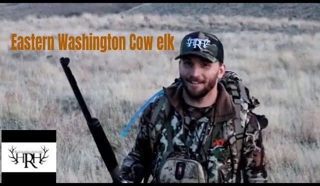 2019 – Eastern Washington Cow Elk Hunt – Muzzleloader season