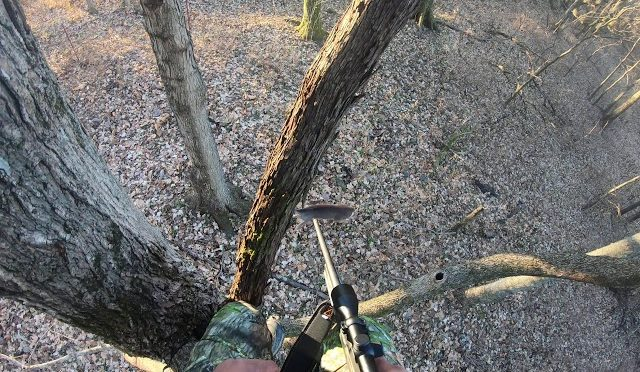 2019 deer hunting in nashville