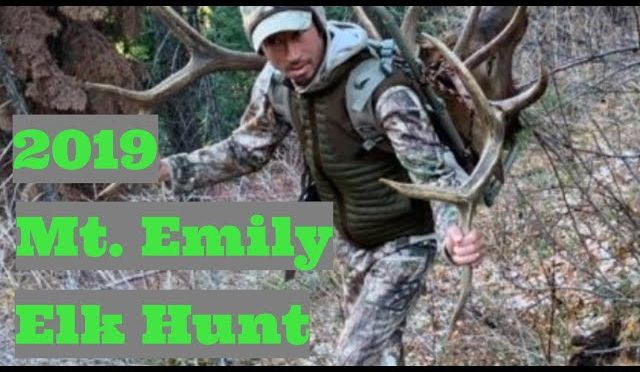 2019 Mt  Emily Elk Hunt
