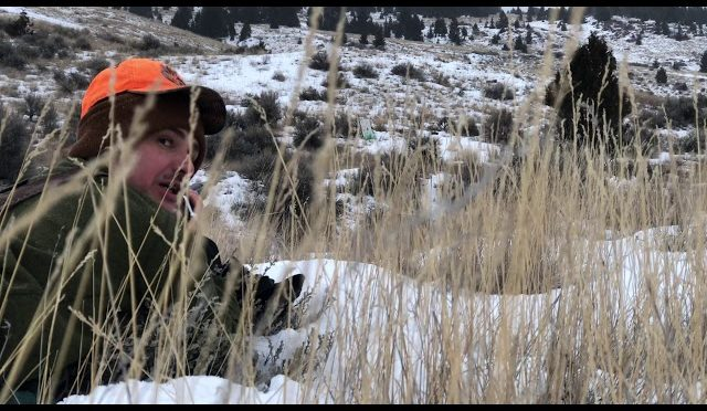 30-06 WW2 Rifle | Zero Elk Rifle for Hunting Late Season Tag, In a Snow Storm