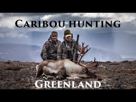 Caribou hunting Greenland