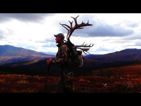 DIY Alaska Caribou Archery Hunt