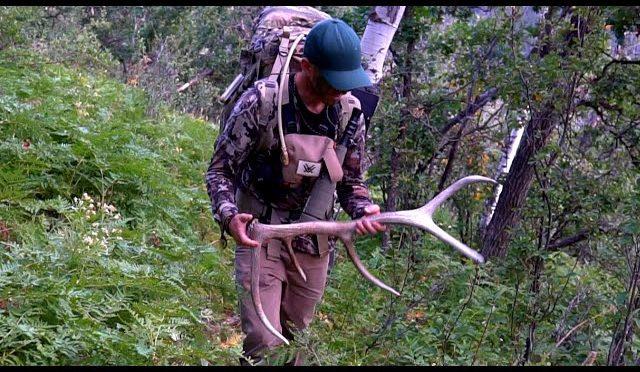 Elk Hunting-Colorado Backcountry 2019 (Part 3)