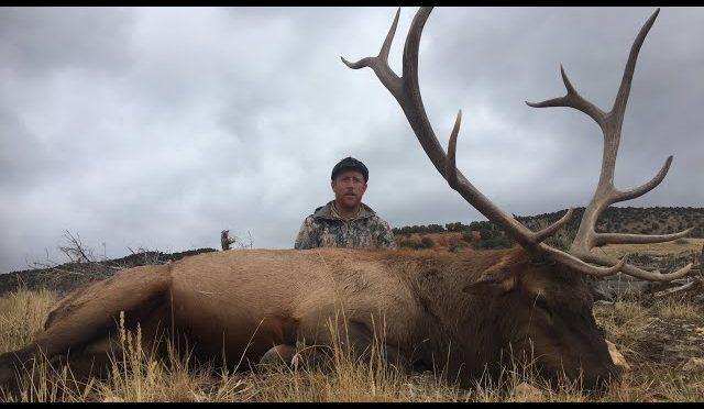 Elk hunting Utah