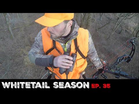 Hunting for Late Season Pressured Deer (Public Land)