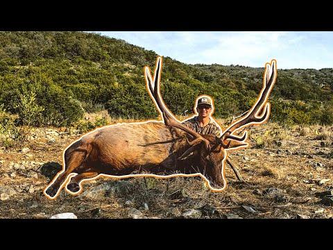 Patton Hunts his FIRST GIANT BULL ELK!!! | Elk Hunting in Texas