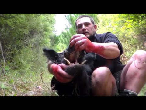 Pig Hunting NZ, The one that nearly got away part 2 (Gott'em)