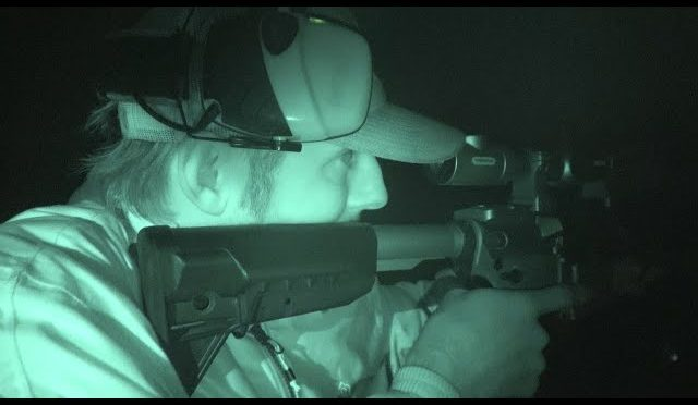 Stalking Wild Hogs at Night with Thermal Scopes Hunting with Hog Swat