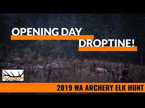 WA Archery Elk Hunt Opening Day 2019