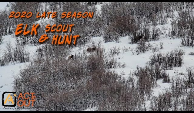 2020 Late Season Elk Scout and Hunt 1