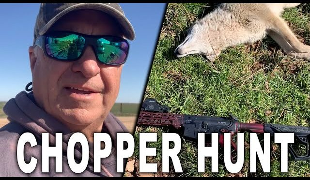 Behind the Scenes of a Helicopter Hog Hunt and Houston Rodeo