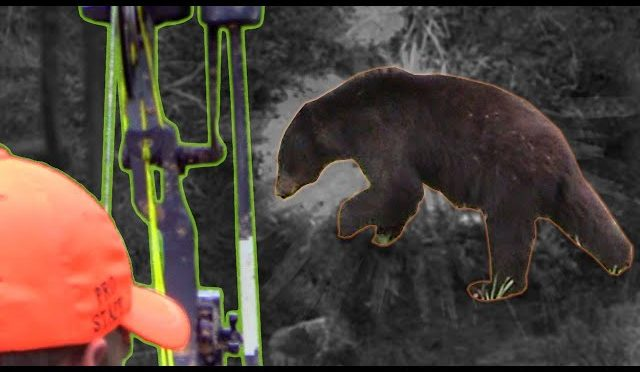 Bow Hunting BEARS UP CLOSE! Spot & Stalk Spring Black Bears