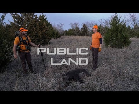 Hunting Public HOGS!! | Birdman Gets TWO MORE in TEXAS! (Crazy GOPRO footage)