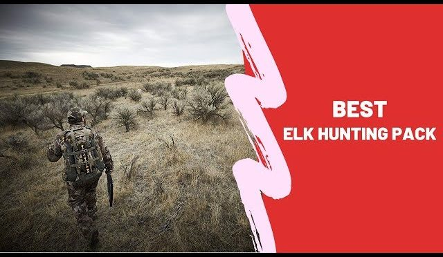 Best Elk Hunting Pack 2020 – Elk Hunting Pack Reviews
